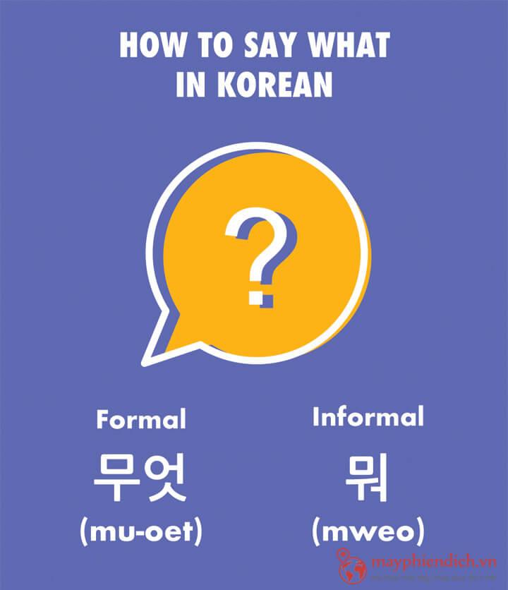 MWO nói tiếng Hàn nghĩa là cái gì