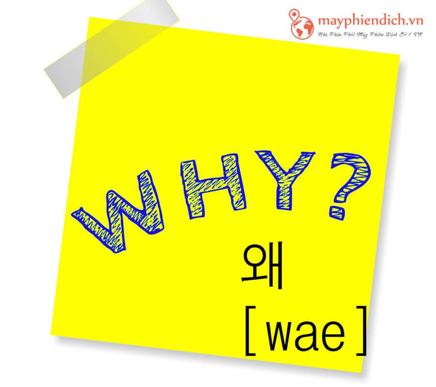 Cách hỏi Why trong tiếng Hàn